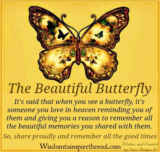 Enjoy these cool butterfly inspirational quotes on products from Amazon!