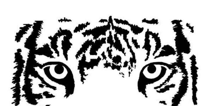 Resultado De Imagen De Tiger Eyes Stencil Manualidades Pinterest