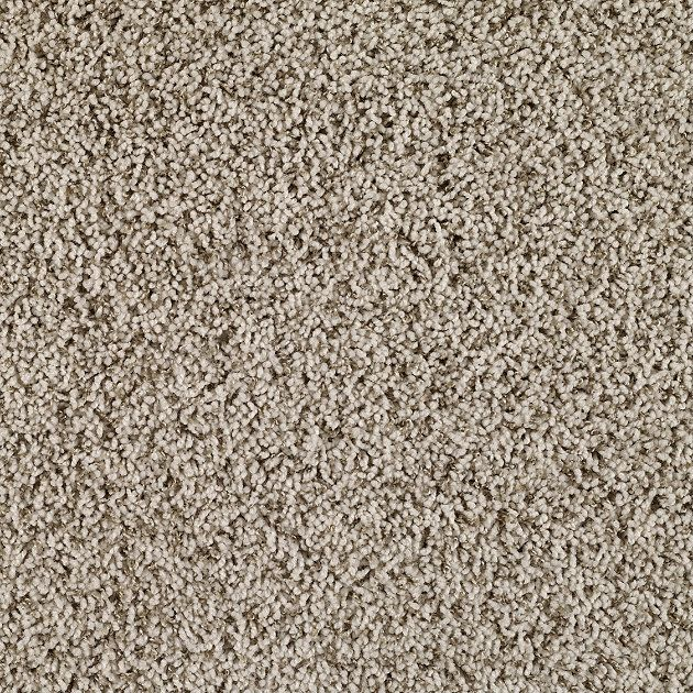 Carpeting In Style Make A Wish B Color Foggy White Flooring By Shaw With Images Frieze Carpet Types Of Carpet Textured Carpet