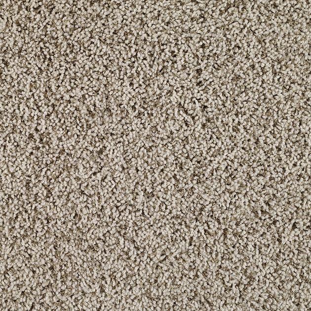 10 Different Types Of Carpet The Mini Carpet Type