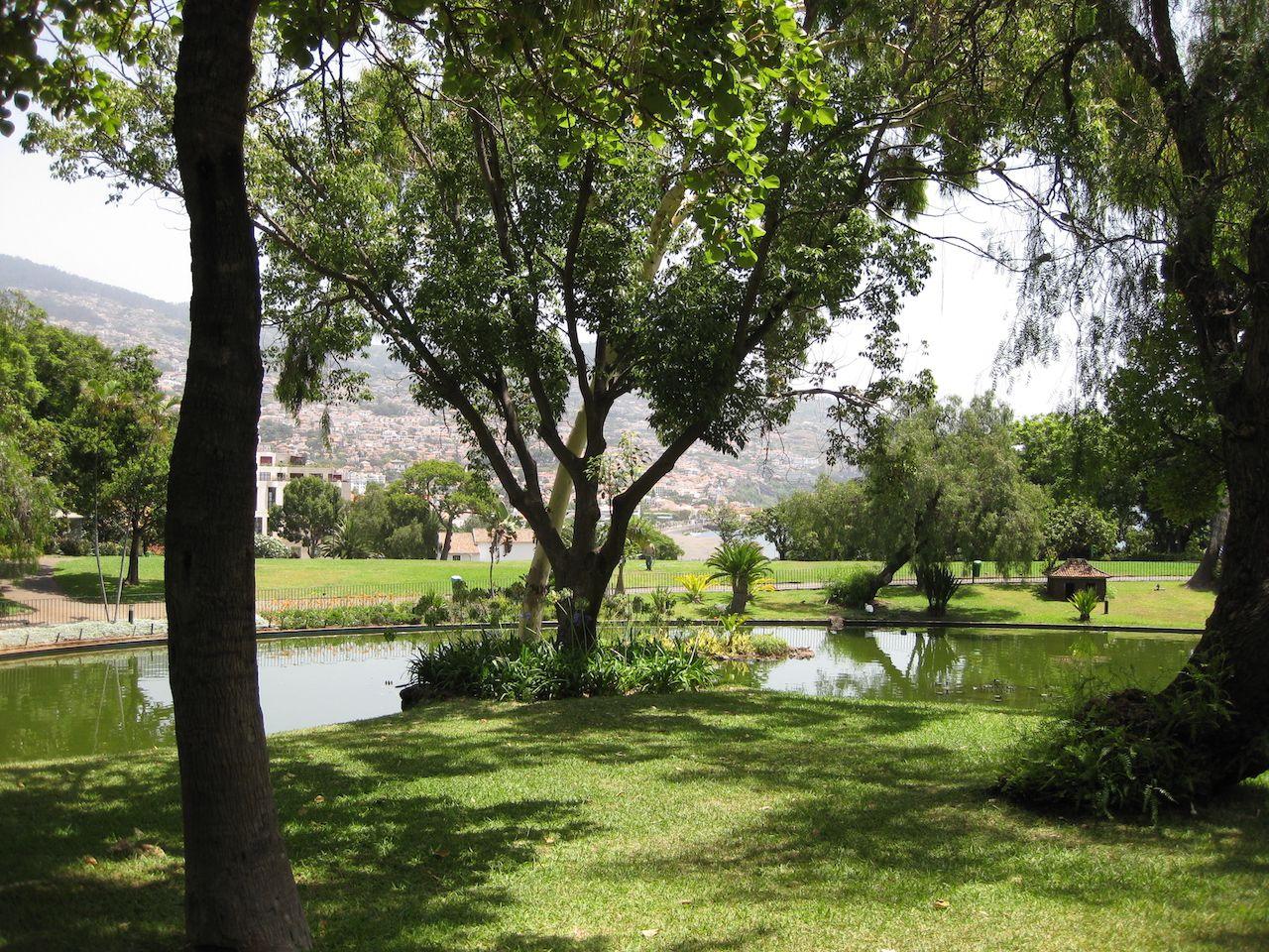 Gastcolumn | João | Verschenen op Portugal-vakantie