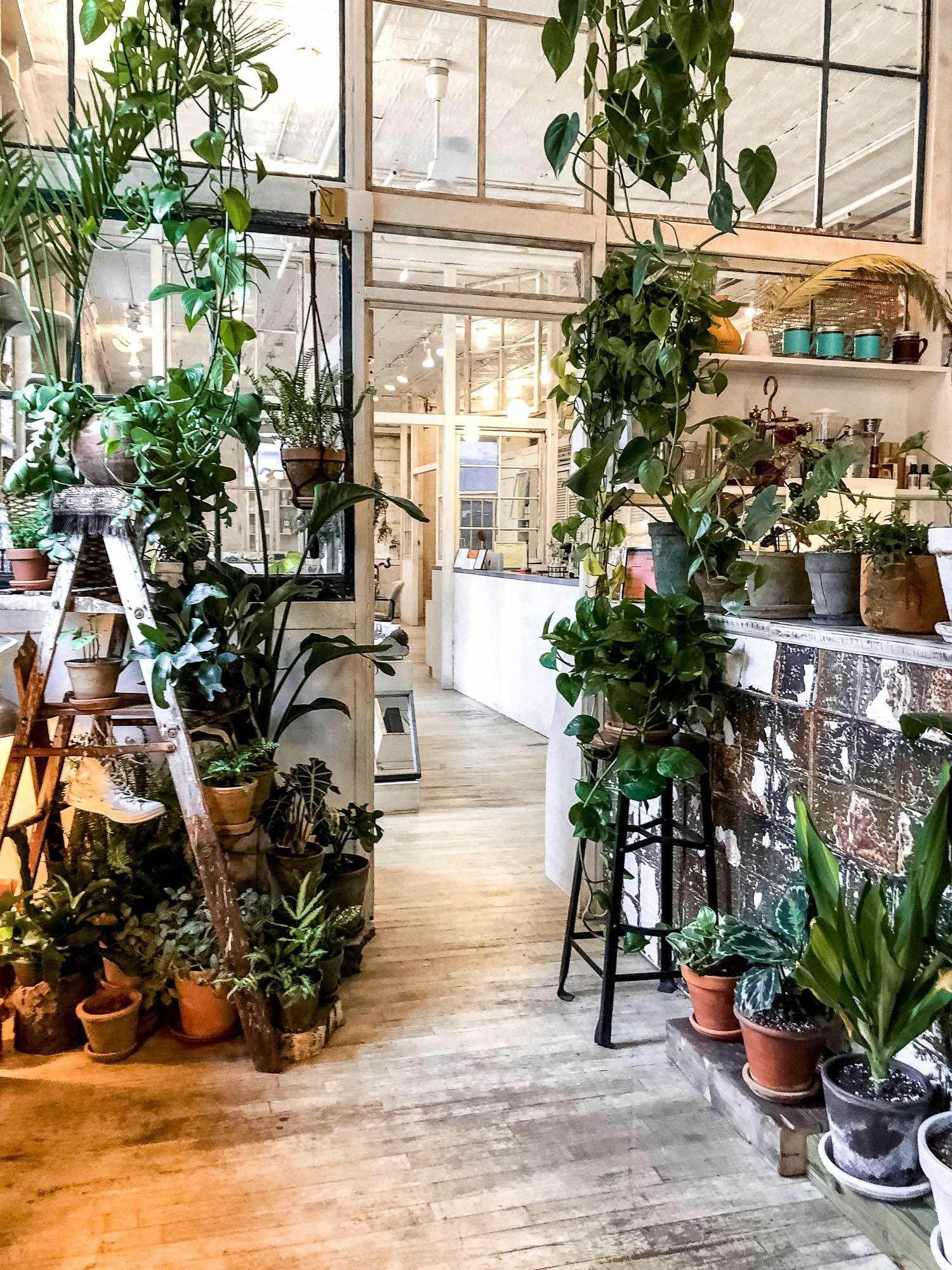 Cavegirlapproved coffee shops in new york small indoor