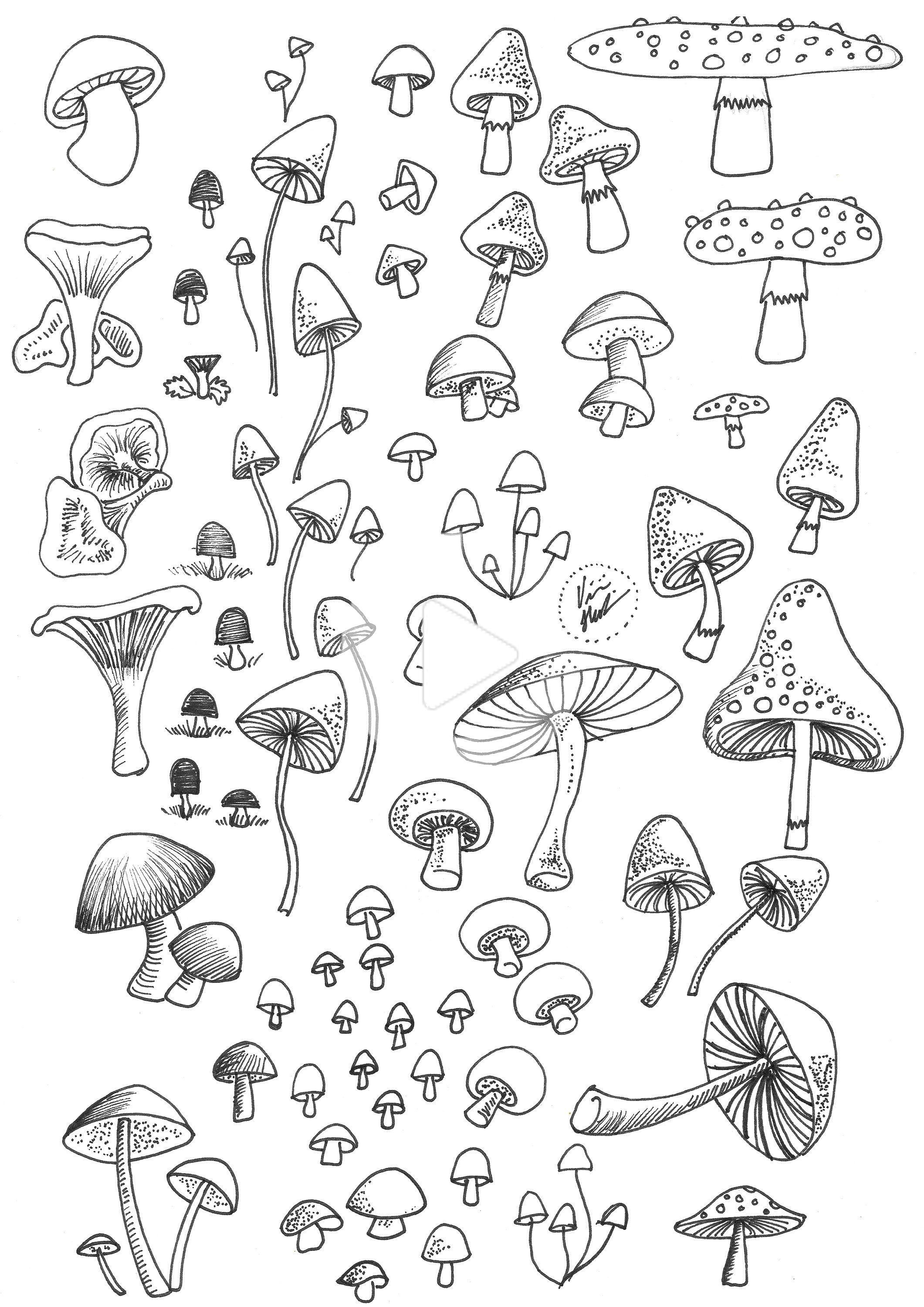 Mushrooms printable stickers for planner, bullet journal