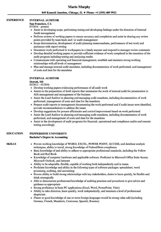 resume sample internal auditor