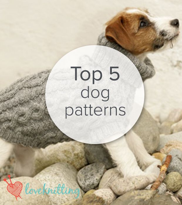 Top 5 Free Dog Sweater Knitting Patterns in 2018 | dog sweaters ...