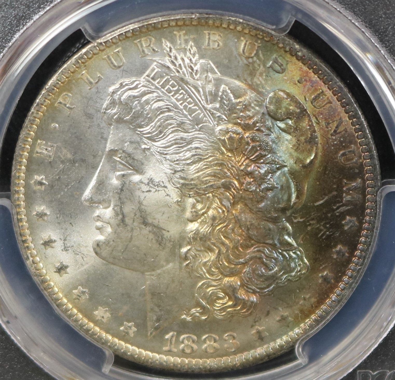 coin dealers new port richey florida