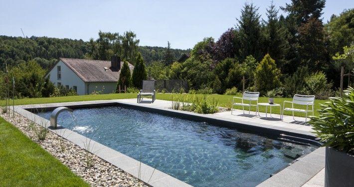 Naturpool Oder Schwimmteich Mit Biologischer Natuerlicher Wasserreinigung 16 Natur Pool Schwimmteich Naturschwimmbecken