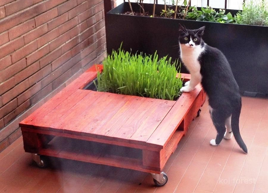 pallet-garden-table-cat-bed, a pet friendly indoor garden ...