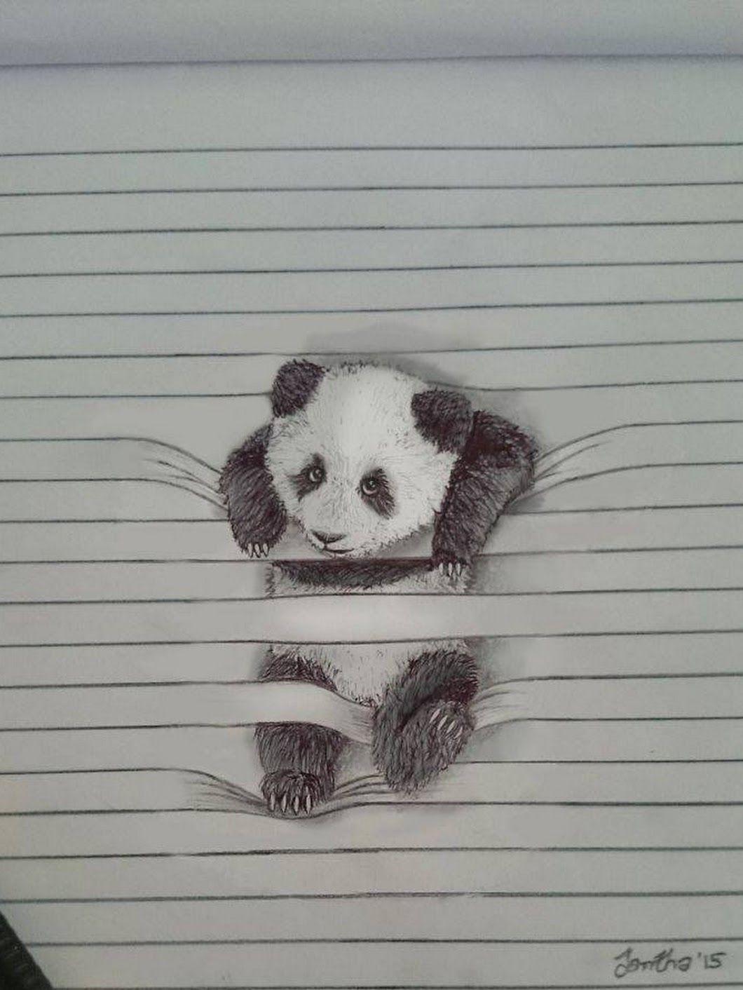 Pin van Claudia Kroon op Getekende Panda Panda tekening
