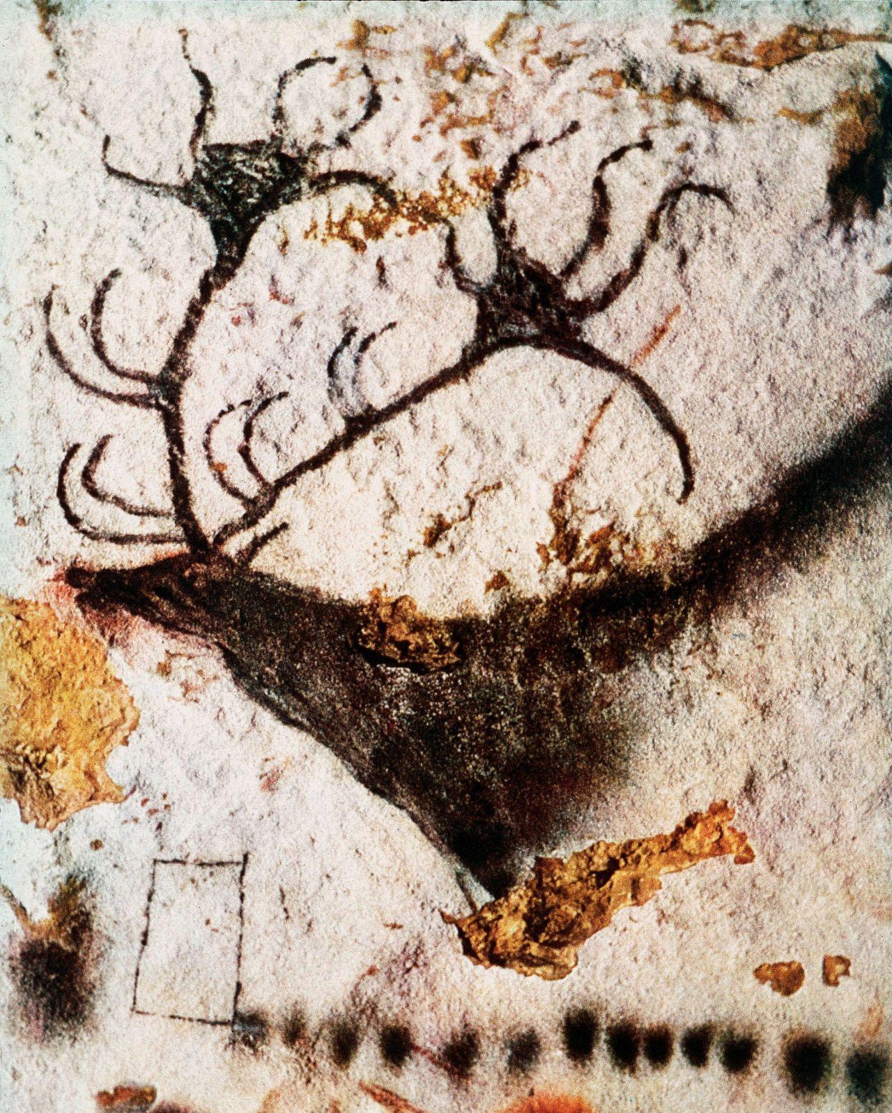 Talus Slopes: Chauvet Cave |Lascaux Cave Paintings Bear
