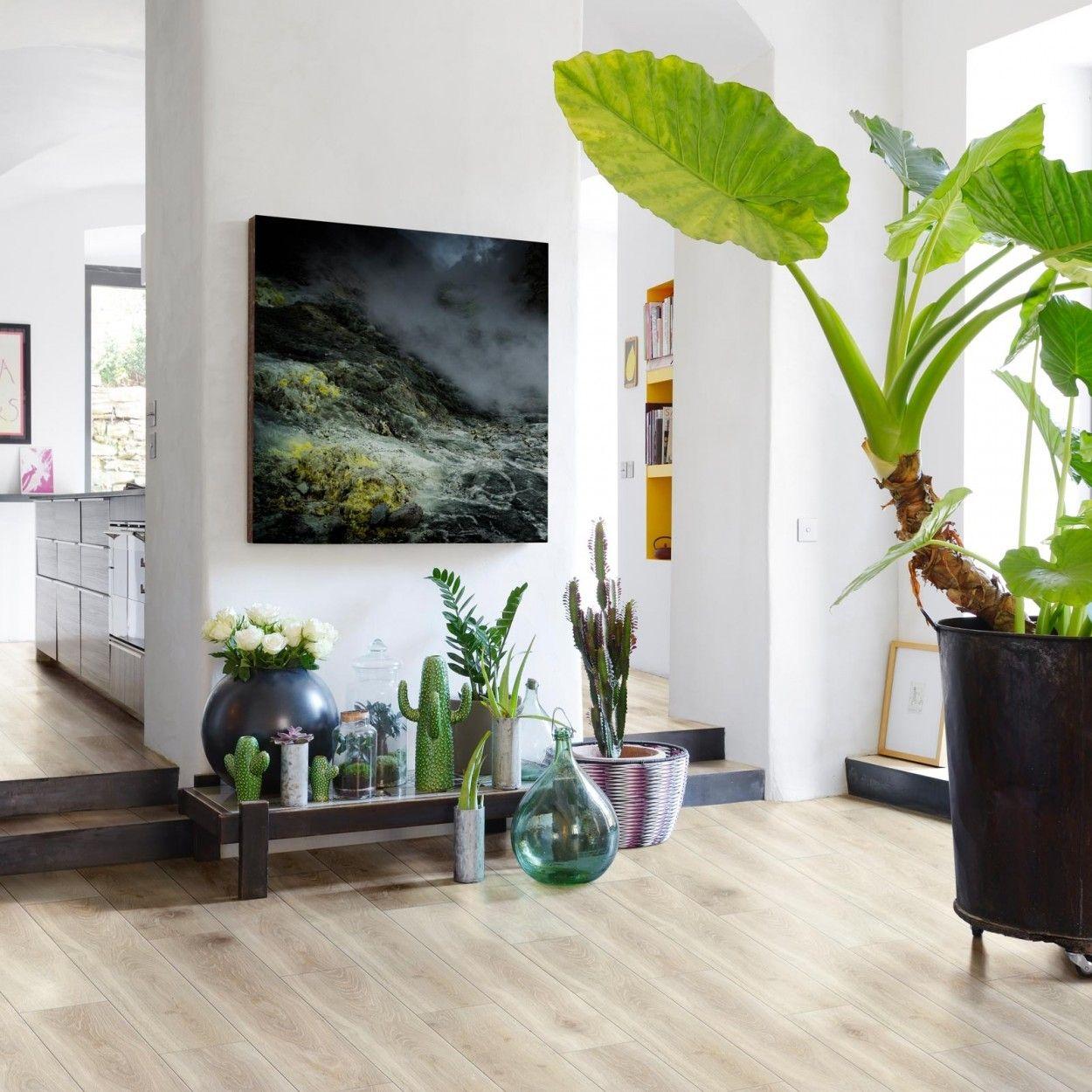"""BerryAlloc Smart 16 V16 """"620011165 Bloom Light Natural""""  Zamów"""