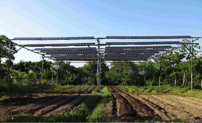 Japan Next Generation Farmers Cultivate Crops And Solar Energy Solar Energy Solar Energy Diy How Solar Energy Works