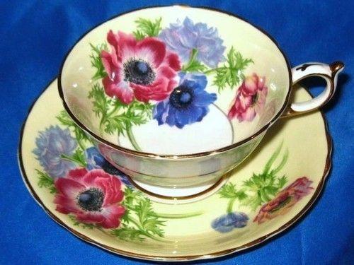 Stunning Anemone on Yellow Paragon Tea Cup and Saucer Set England