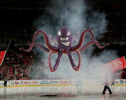 Al the octopus hey hey hockeytown pinterest hockey red wing al the octopus the octopusdetroit red wingshockey voltagebd Gallery