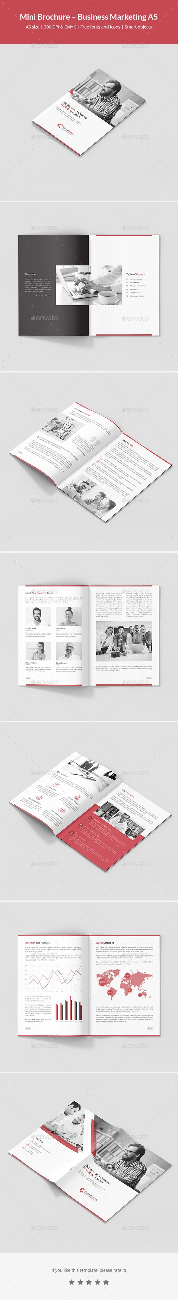 Mini Brochure Business Marketing A5 Business Marketing