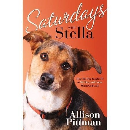 Saturdays With Stella How My Dog Taught Me To Sit Stay And Come
