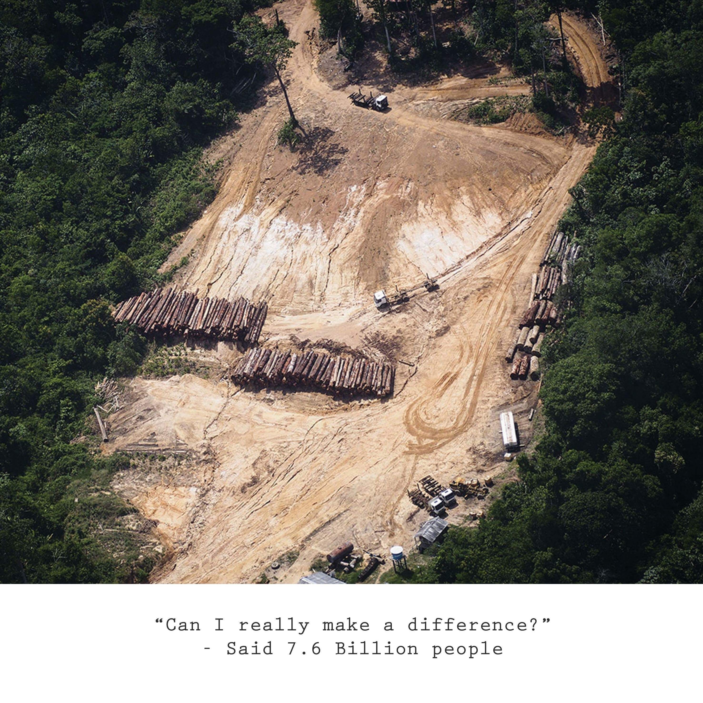 Deforestation Of The Amazon Rainforest Continues To Happen