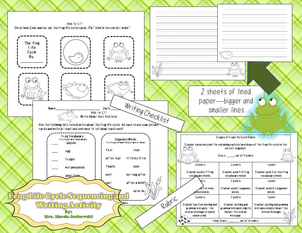 Frog Life Cycle Sequencing And Writing Activity