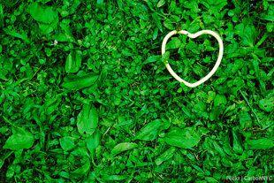 heart healthy: 7 valentine's day ideas