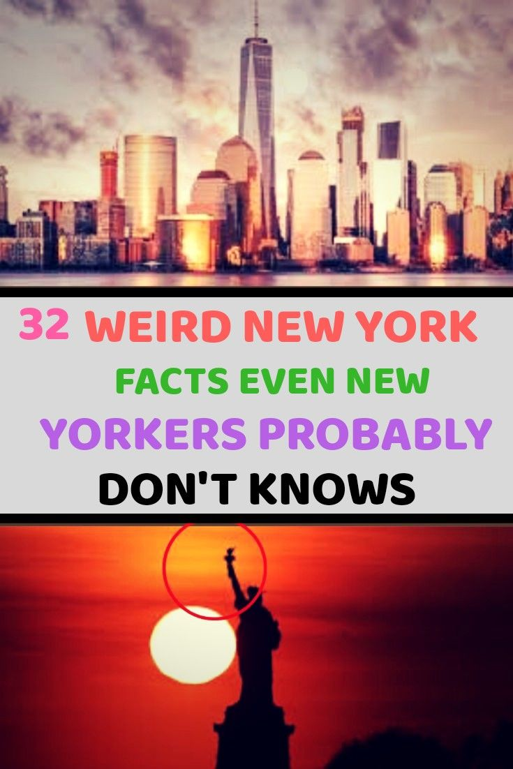 New Funny Pins 32 Weird New York Facts Even New Yorkers Probably Don't Know These thirty-two interesting facts about New York highlight the hidden gems and weird trivia behind the biggest city in the United States. 4