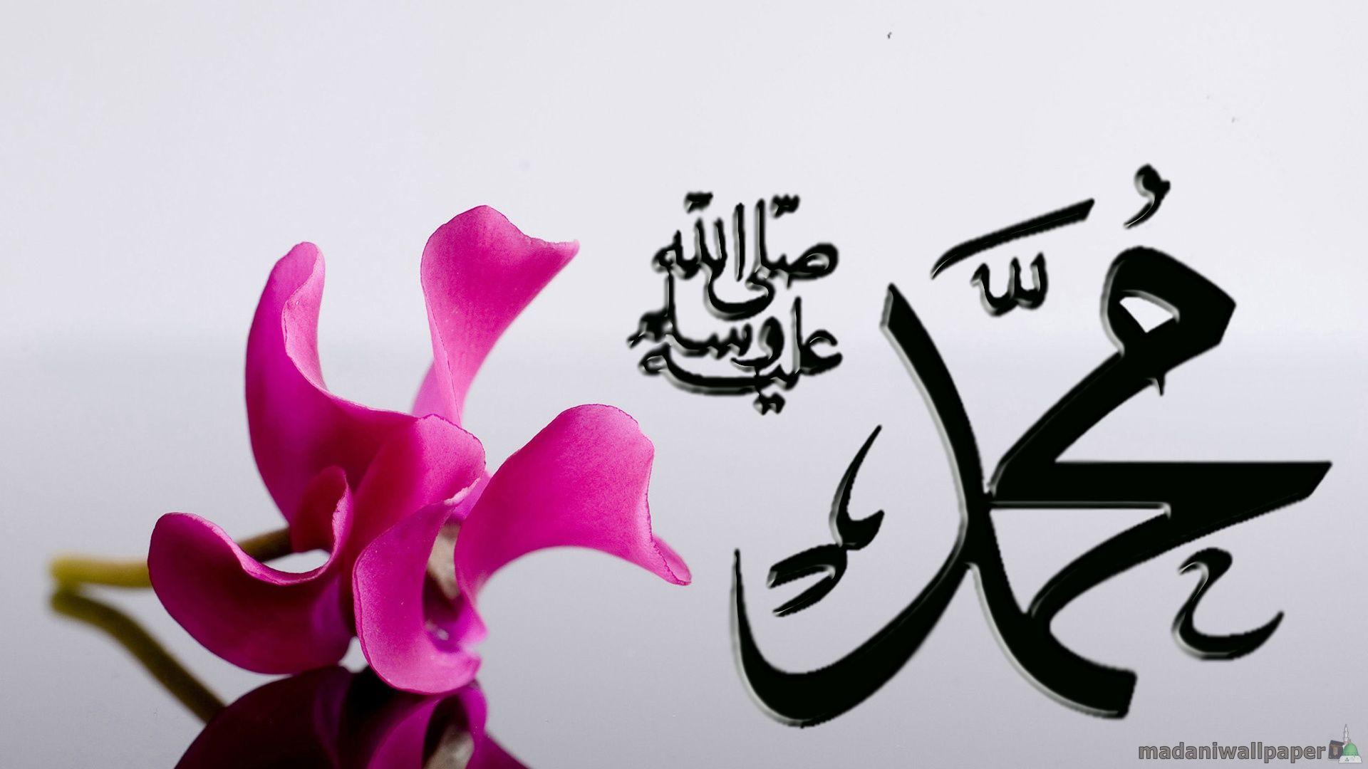 Wonderful Wallpaper Name Arabic - 25da03104463871ef84f3465fa0d6cb4  Photograph_948745.jpg