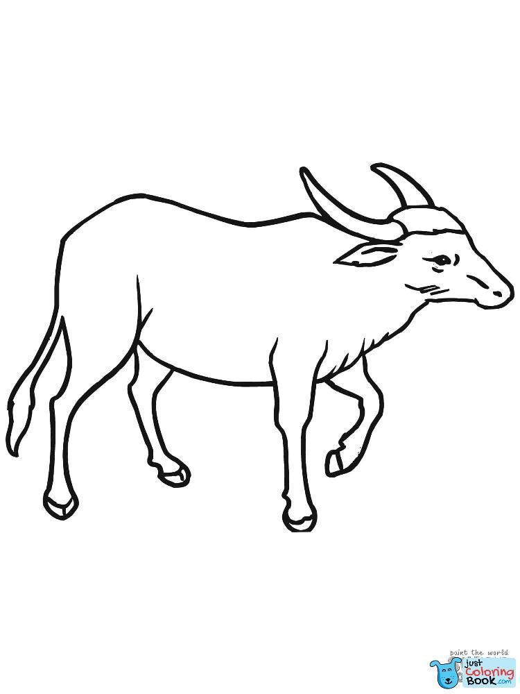 Wild Asian Water Buffalo Coloring Page Free Printable With Regard To Wild Water Buffalo Coloring Pages