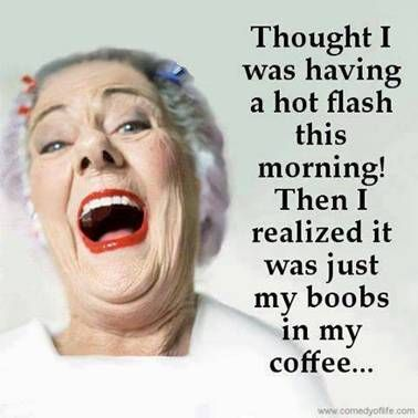 Pin By Gail Heisler On Humor Funny Quotes Humor Hot Flashes