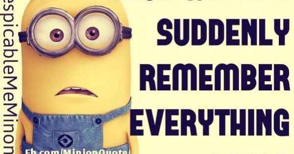 My bed is a magical place | Minions funny, Funny minion quotes, Funny minion pictures