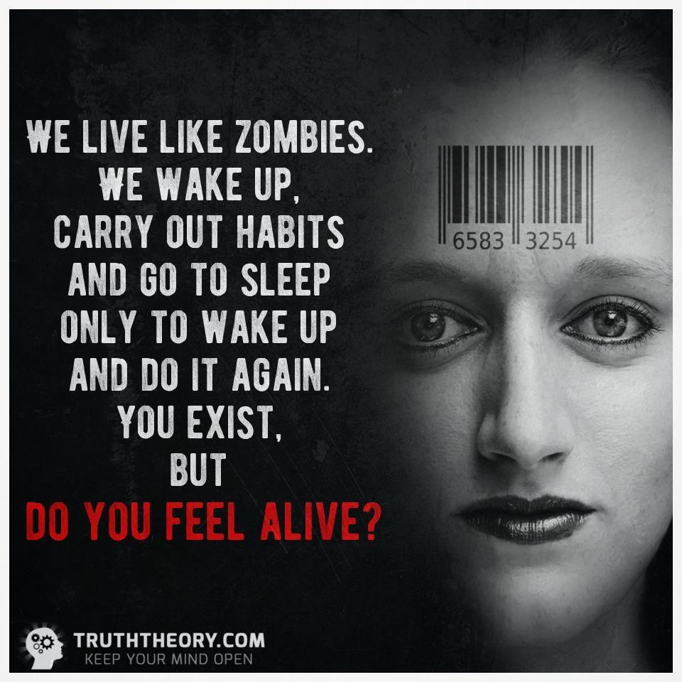 Truththeory.com (@Truththeorycom) | Twitter
