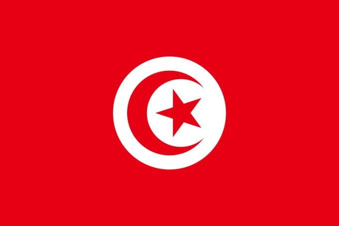 Flag of tunisia flags pinterest flags tunisia flag and picture flag