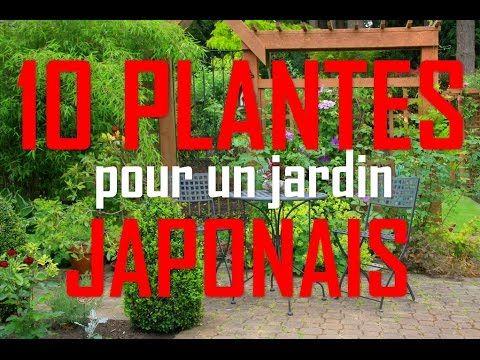 Quelles Plantes Pour Un Jardin Japonais 10 Plantes Youtube