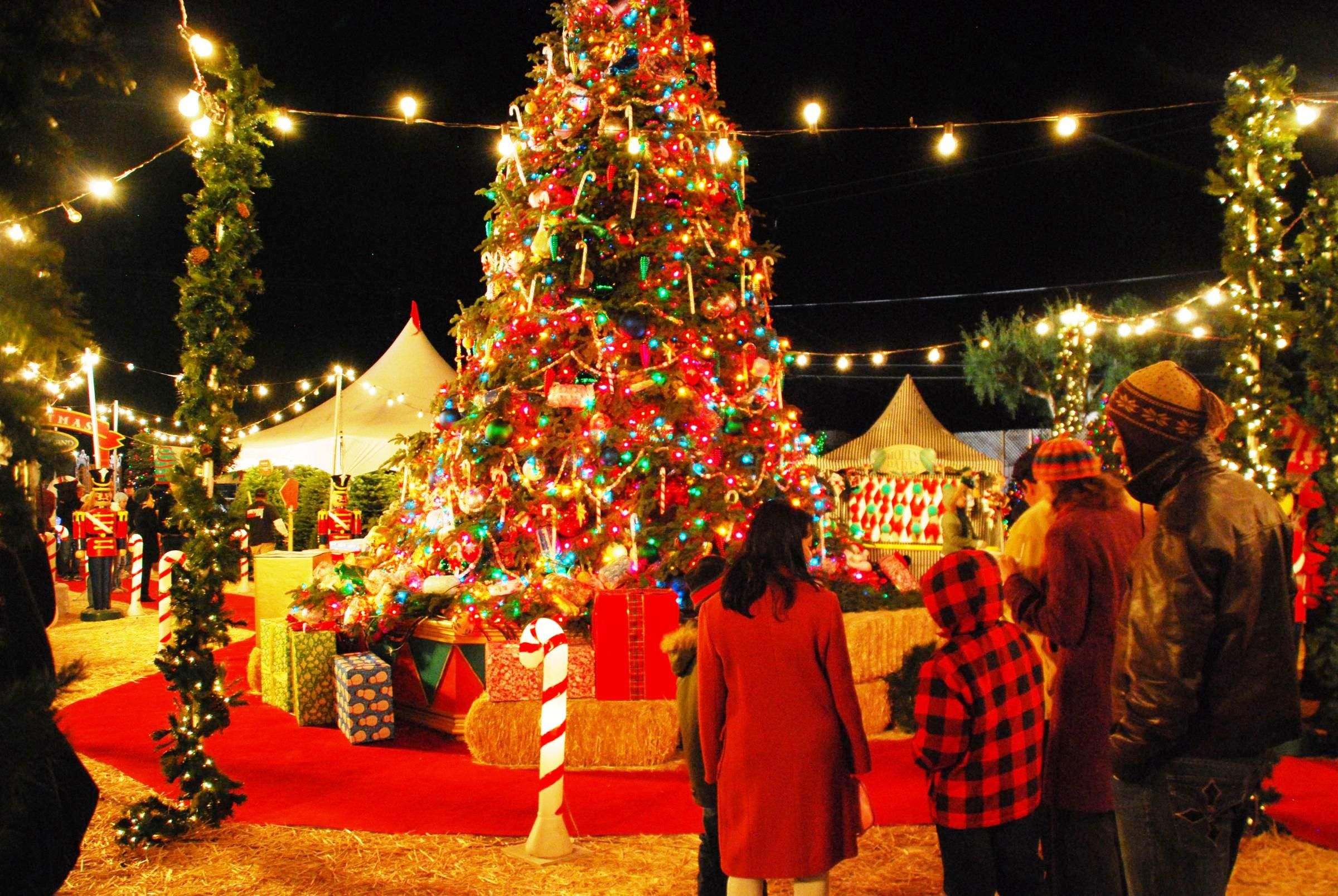Christmas is a festival that is celebrated all over the
