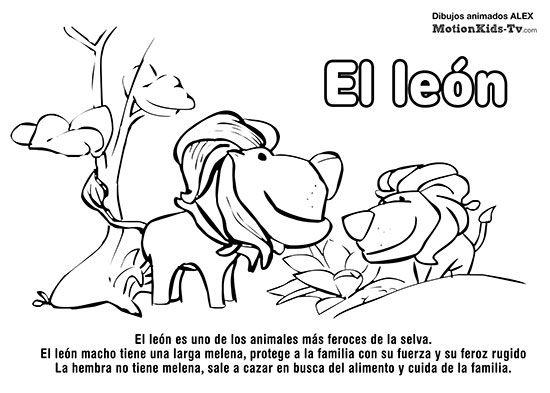 LEON, Pintas Animales Del Mar, Dibujos Colorear