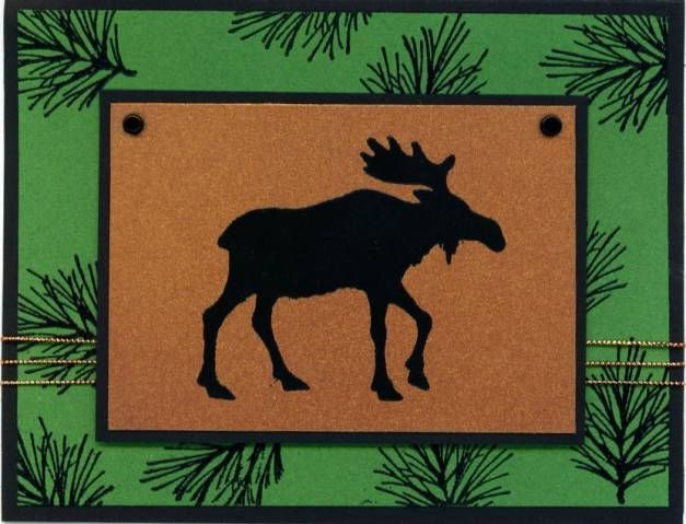 Definitely Decorative Pines Stampin Up - Yahoo Image Search Results