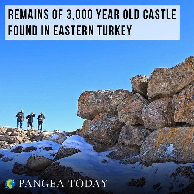 Visit www.pangeatoday.com to read the full article!