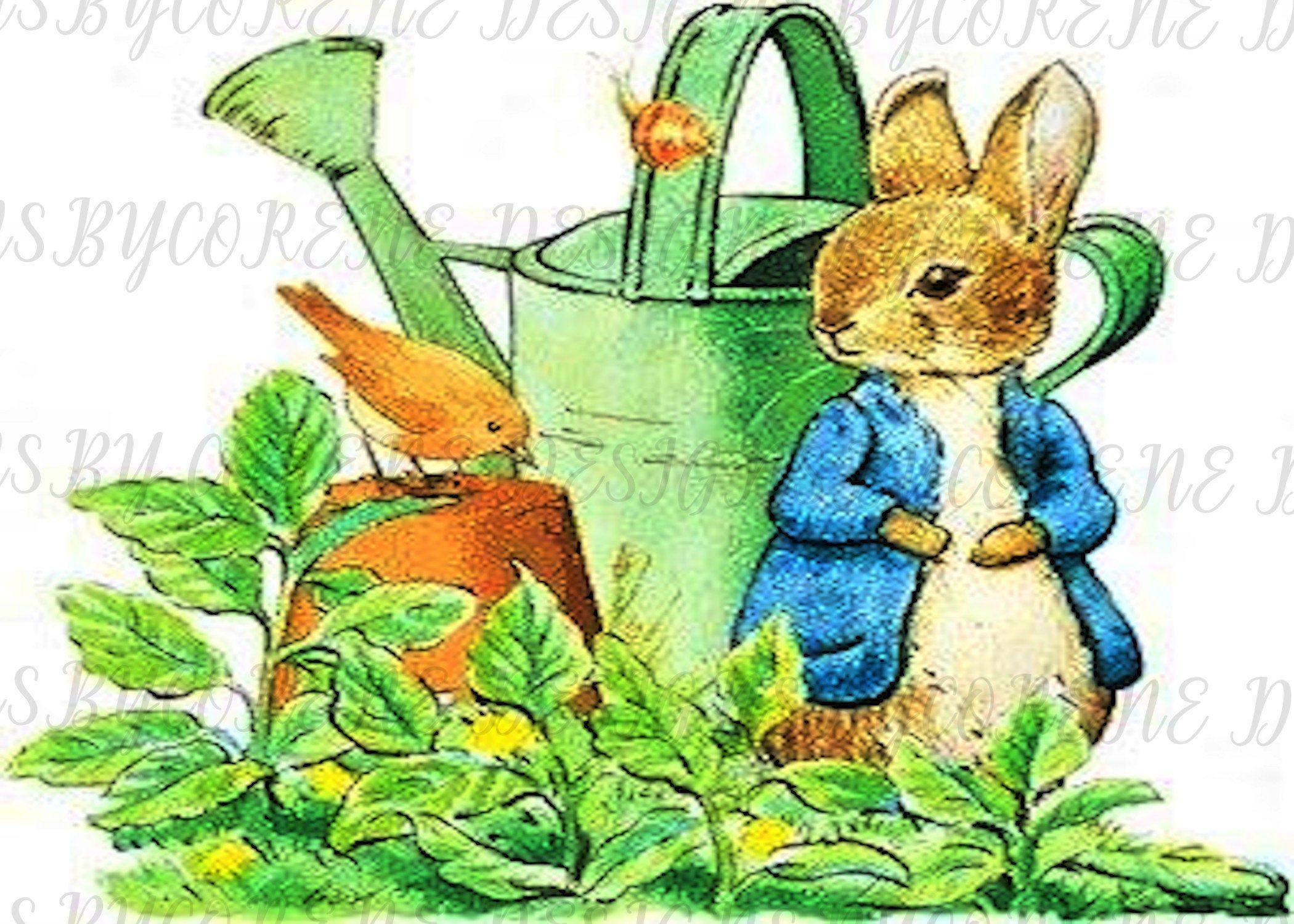 Printable Peter Rabbit Clip Art Digital Download Printable Etsy In 2020 Peter Rabbit And Friends Beatrix Potter Illustrations Peter Rabbit Illustration