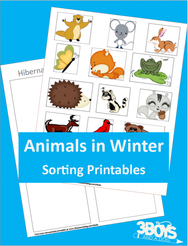 animals in winter hibernation free homeschool printables and worksheets preschool. Black Bedroom Furniture Sets. Home Design Ideas