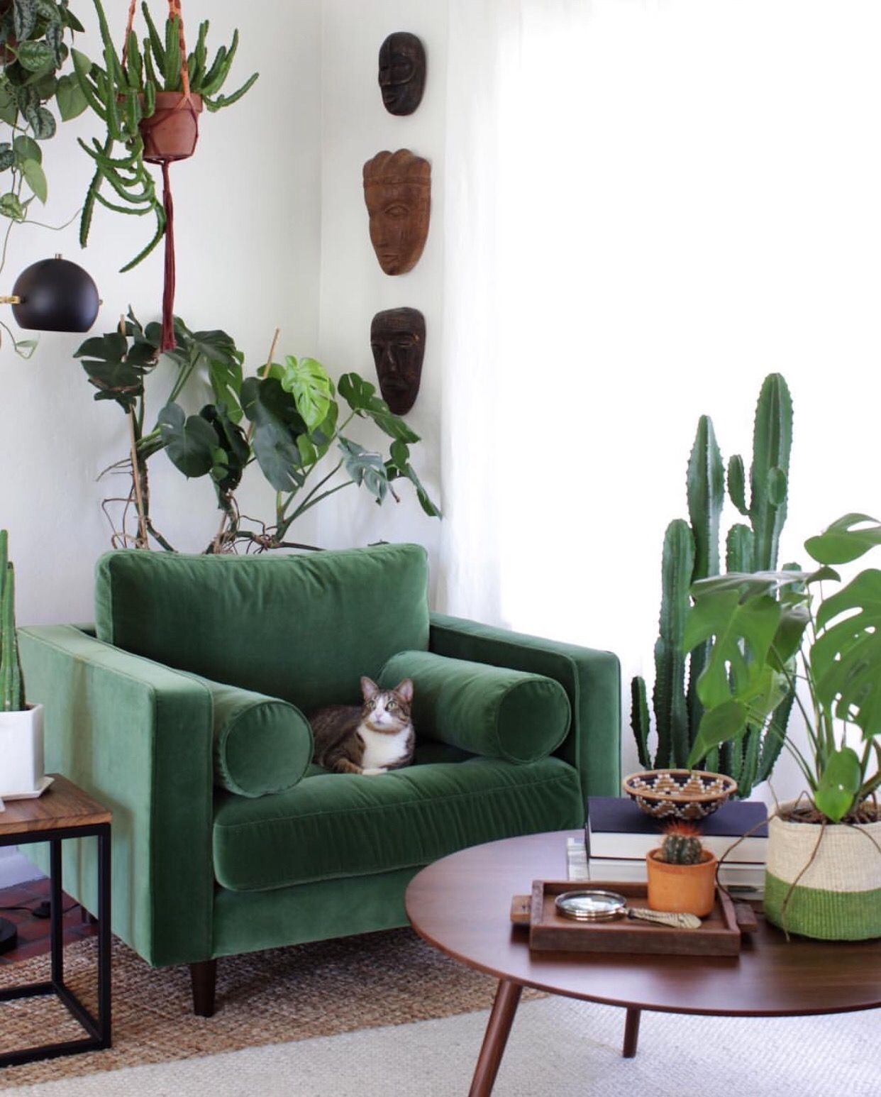 Modern Living Room With Green Armchair Surrounded By Plants And A Cute Cat Living Room Green Cheap Living Room Furniture Home Decor #nice #chair #for #living #room