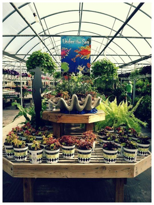 Hoen 39 s greenhouse and garden center hc retailers Telly s greenhouse and garden center