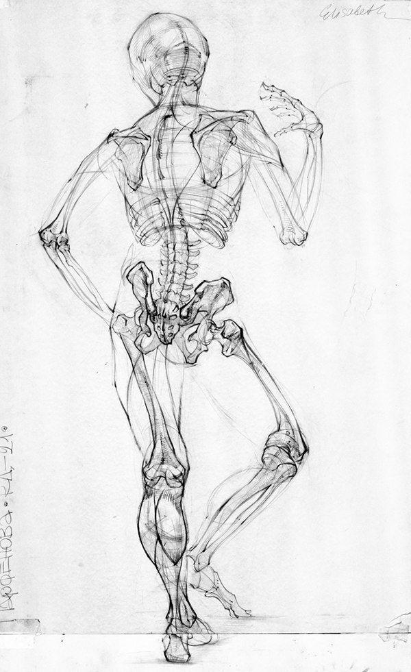abP-nQt2Gbc.jpg (600×981) | ANATOMY | Pinterest | Anatomía y Dibujo