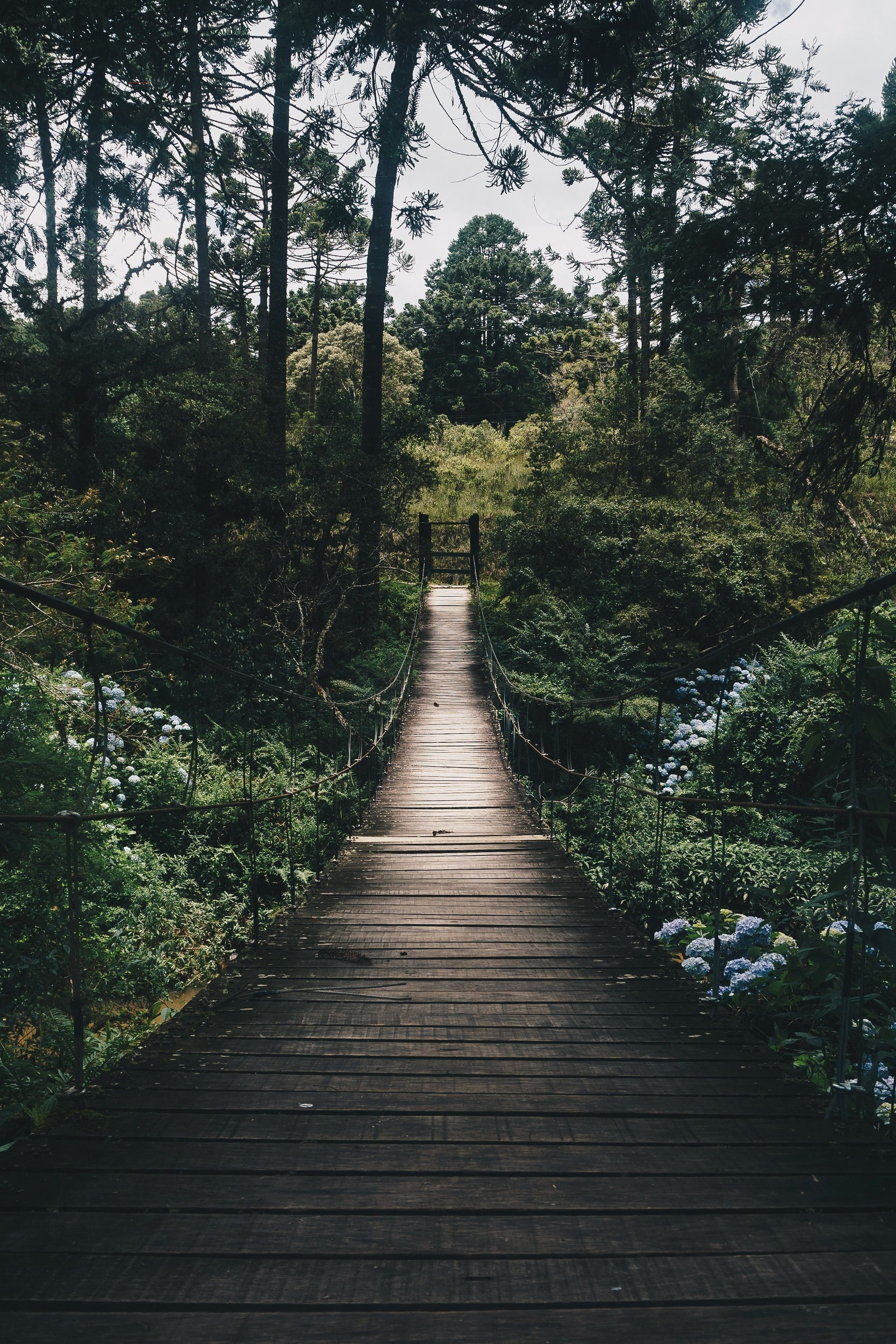 Zen im Alltag Der Weg zu sich selbst landscapepics in