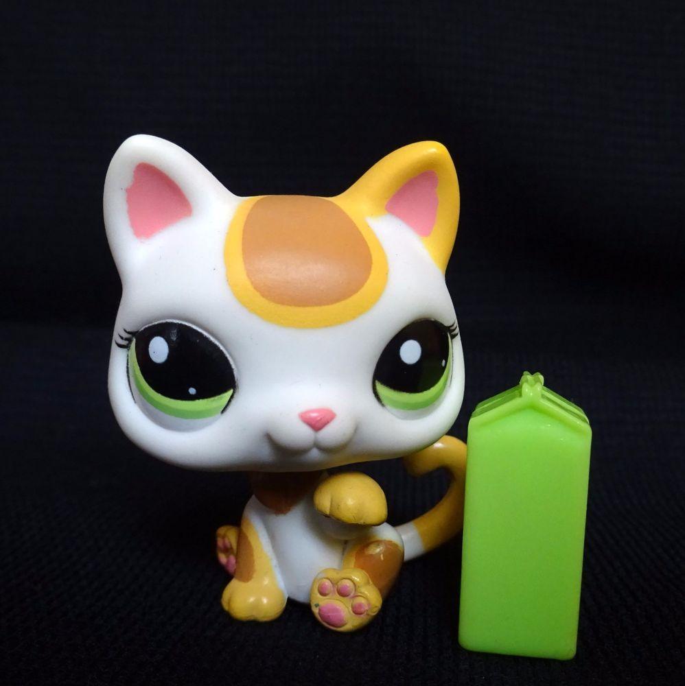 Littlest Pet Shop 2108 Blythe Sitting Kitten Cat Lps Toy Hasbro White Spotted Lps Toys Littlest Pet Shop Pet Shop
