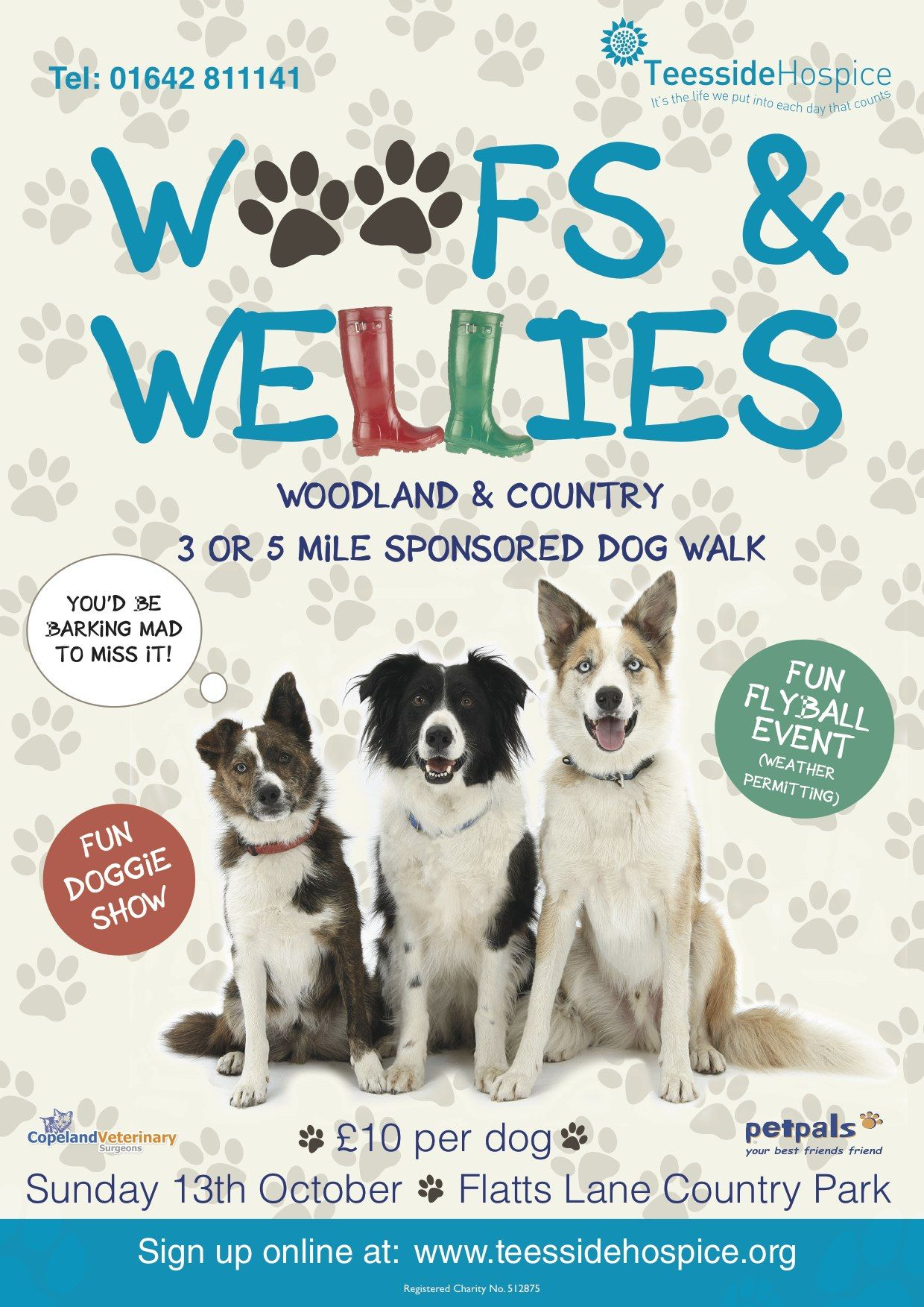 Woofs And Wellies Sponsored Dog Walk Charity Event For