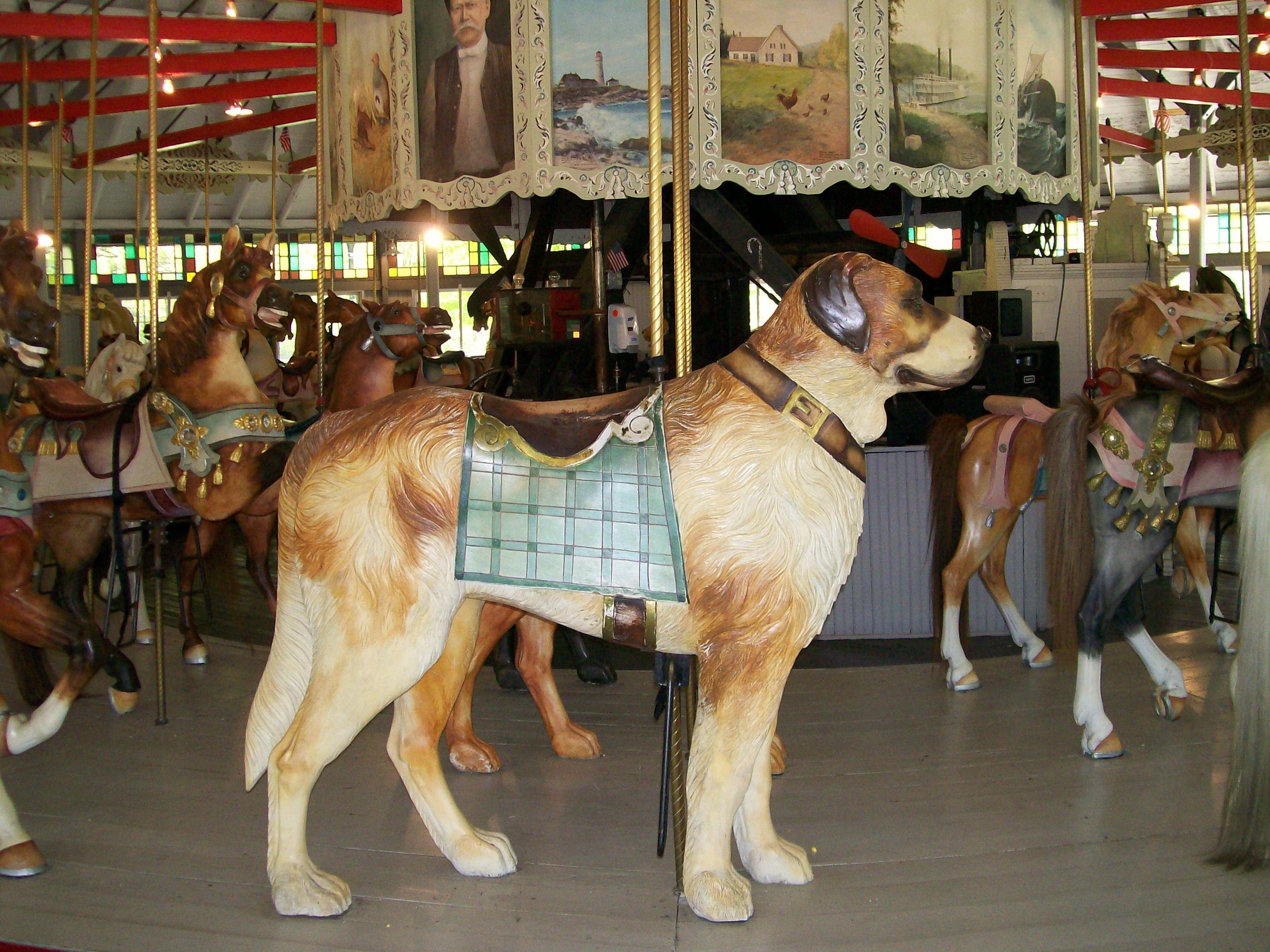 National carousel association denver zoo carousel african wild dog - Carousel Dog Riverside Rhode Island Ridecolorfully