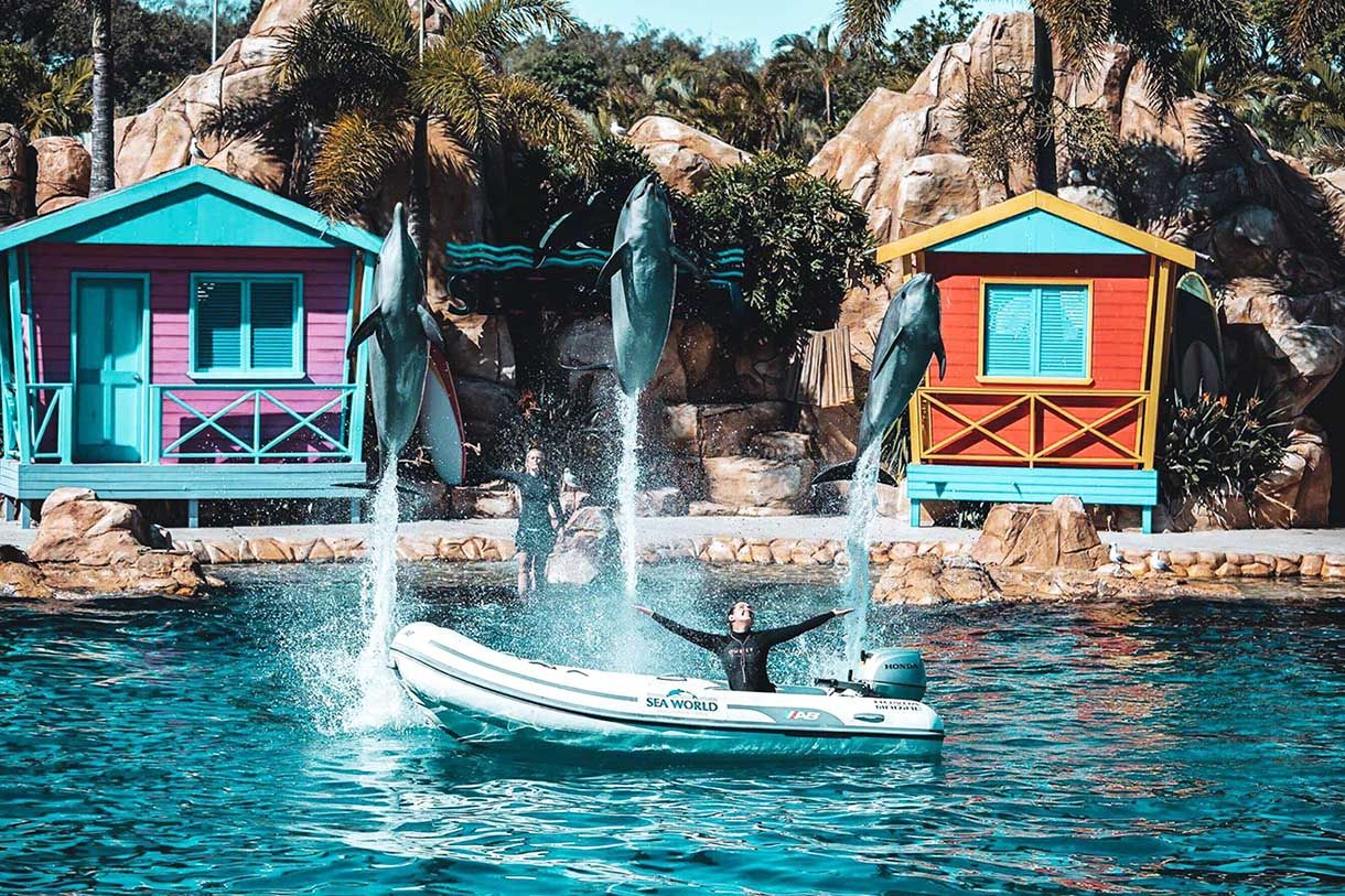 Pin By Gezginsitesi On How Much Is The Ticket Prices Resort Water Park Sea World Best Family Resorts
