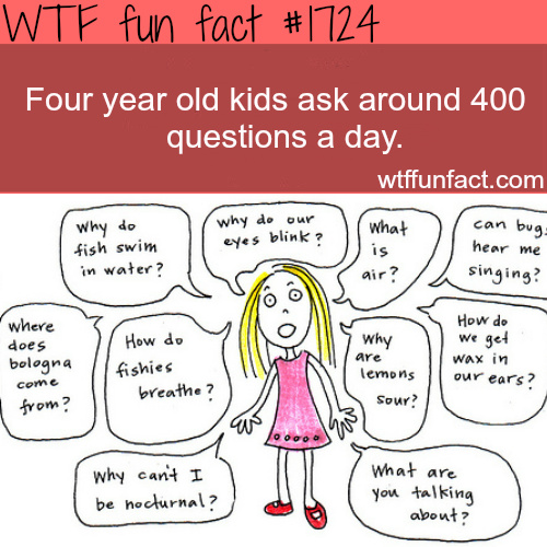 How many questions do 4 year old kids ask? - WTF fun facts ~~ as a ...
