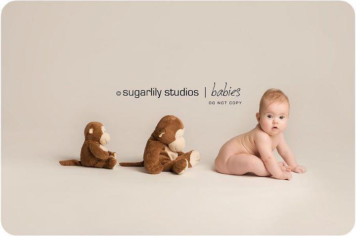 Baby Photographer | Newborn Photography  Sugarlily Studios