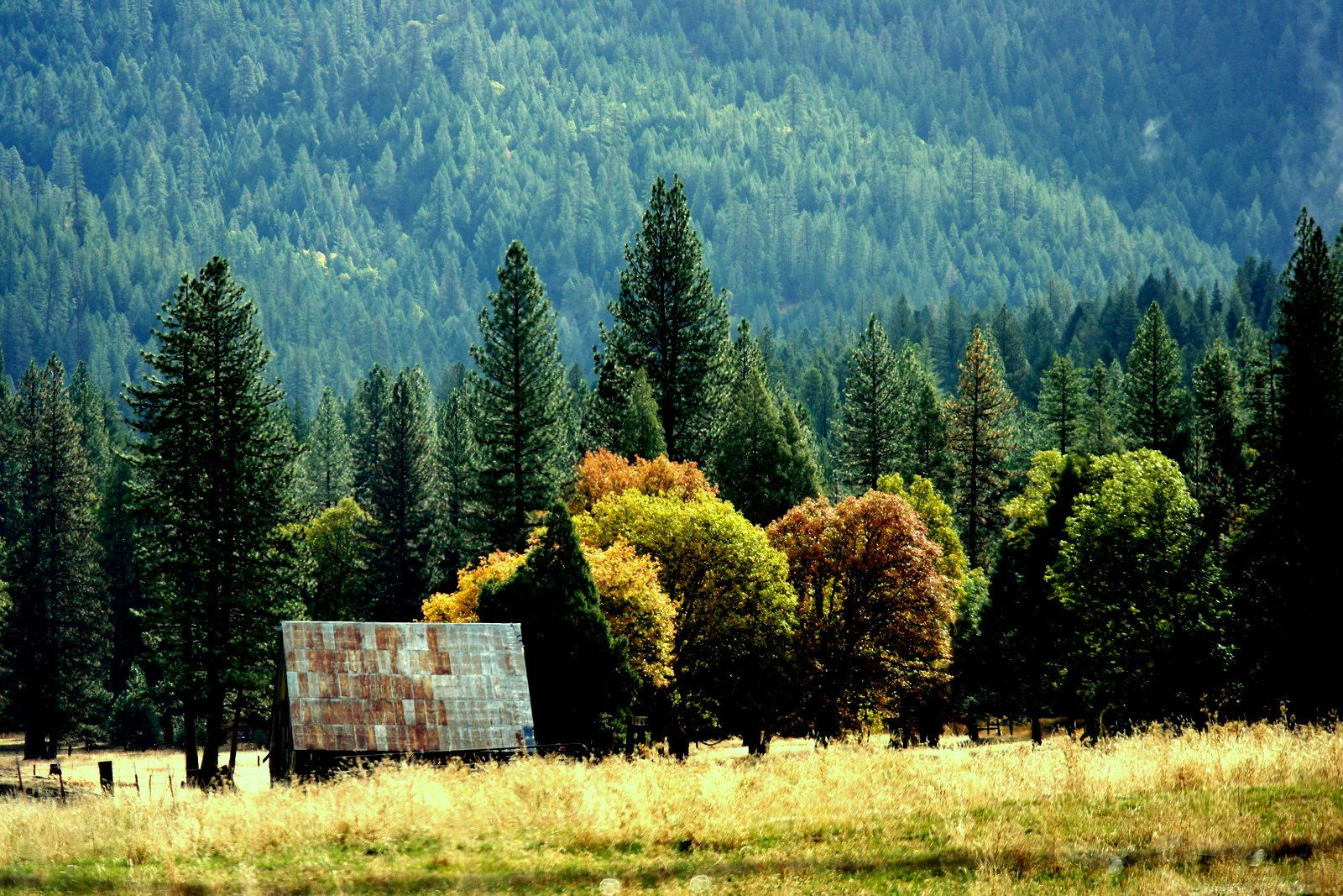 Open space and great fall color. Just five minutes from Ada\'s Place ...