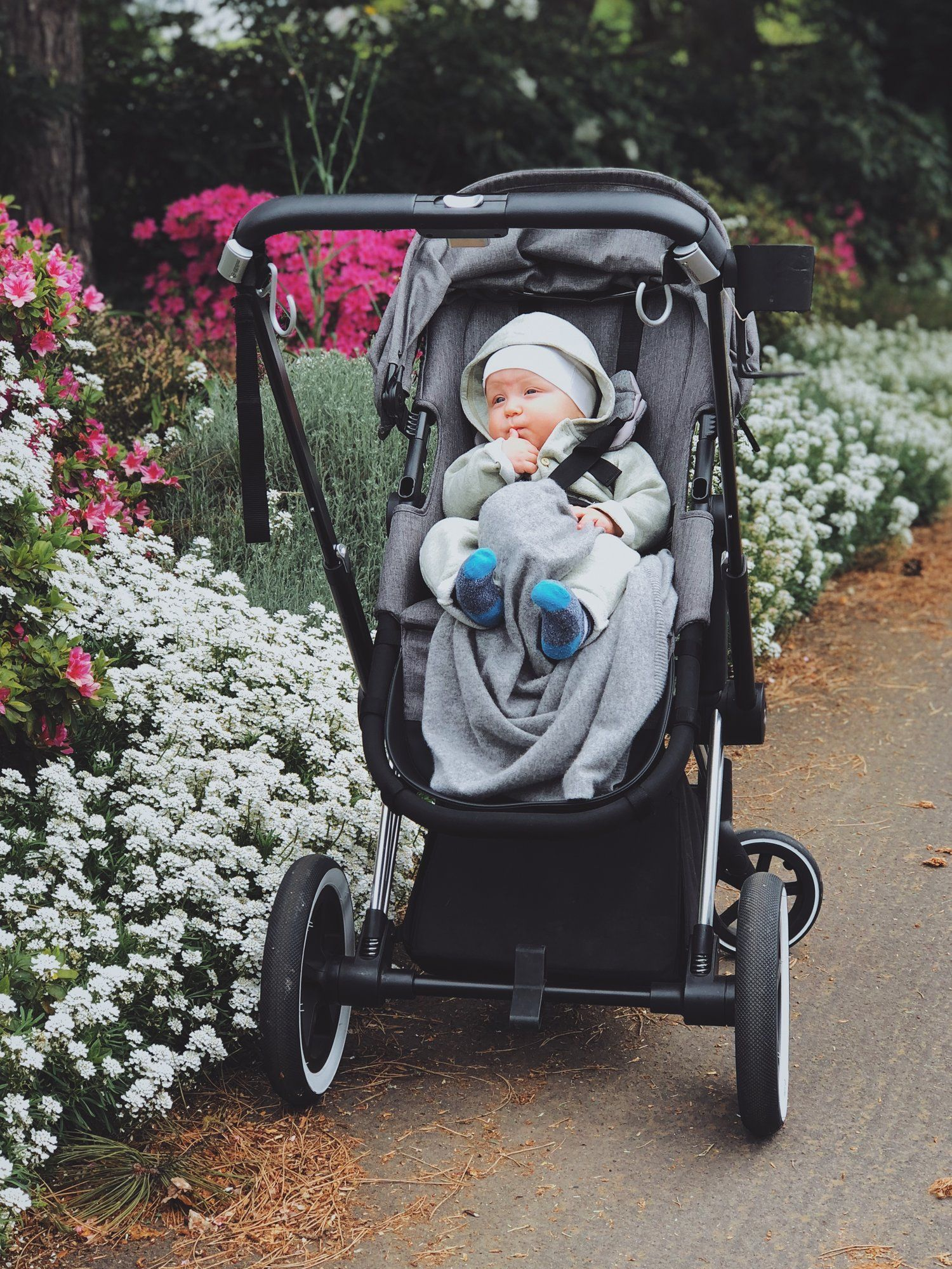 Buggy Board Moon Nuova Cybex Priam With The Buggygear Stroller Hooks First Baby