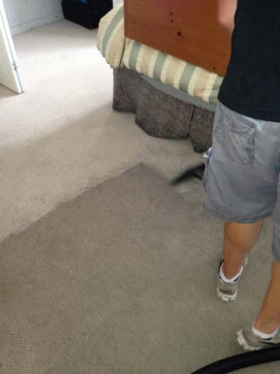 Carpet Cleaning Raleigh